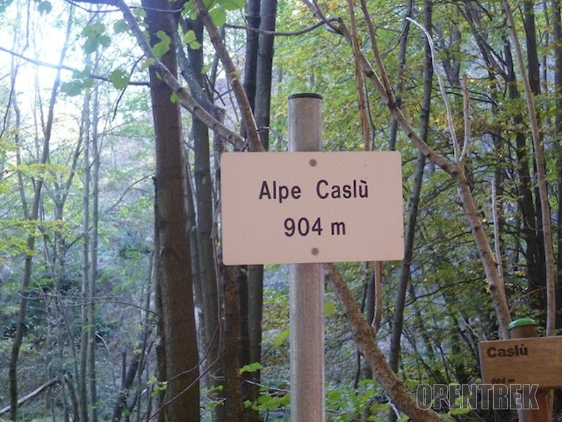 alpe caslu