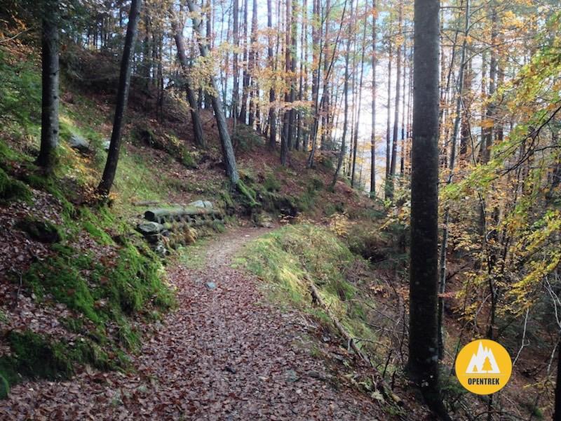 Escursione sul sentiero delle Bore